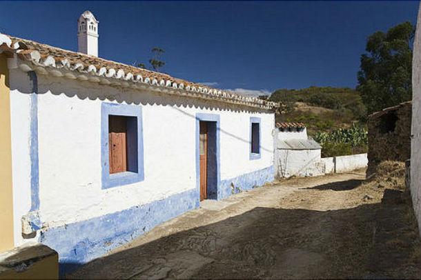 jovens portugueses apostam na agricultura. estrangeiros investem em casas de charme