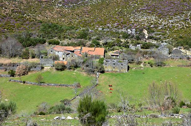61d99f55f0 vendem-se duas aldeias em trás-os-montes (fotos) — idealista news