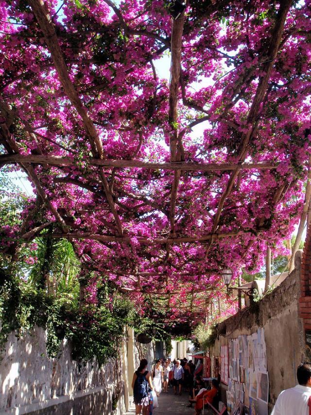 Rua em Positano, Itália