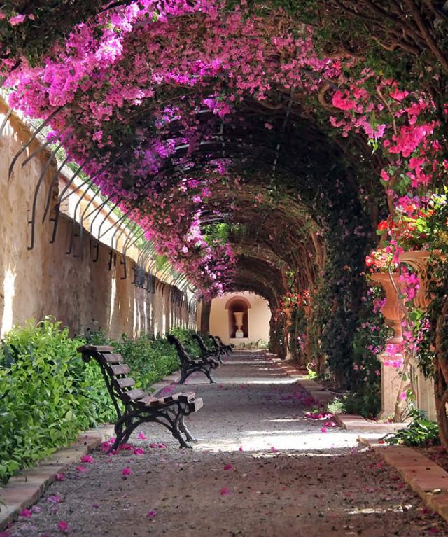 Rua em Valência, Espanha