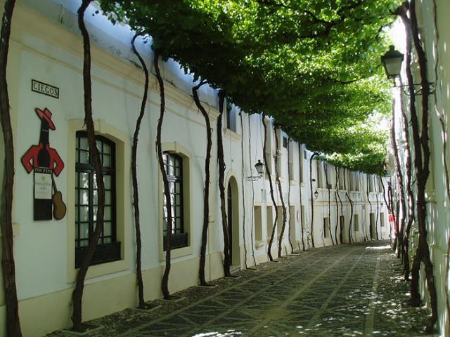 Rua em Jerez, Cádiz, Espanha
