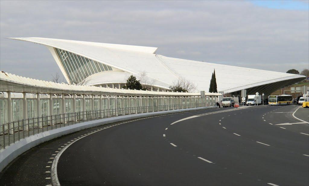 Aeroporto Bilbao : As controversas obras de calatrava quot pai da gare do