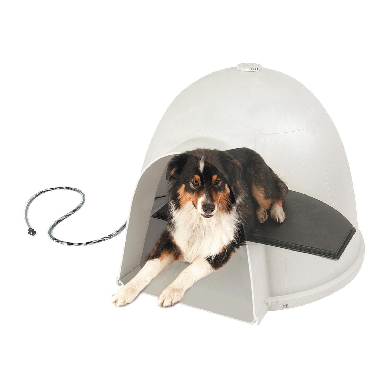 """Um iglu """"cool"""" e com aquecimento"""