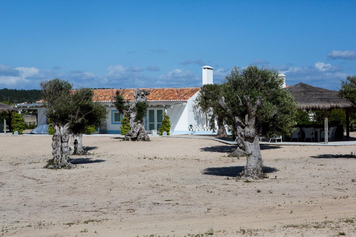 Casas, a 500 metros da praia do Pego, onde família do ex-presidente do BES costuma passar férias (foto do Público)