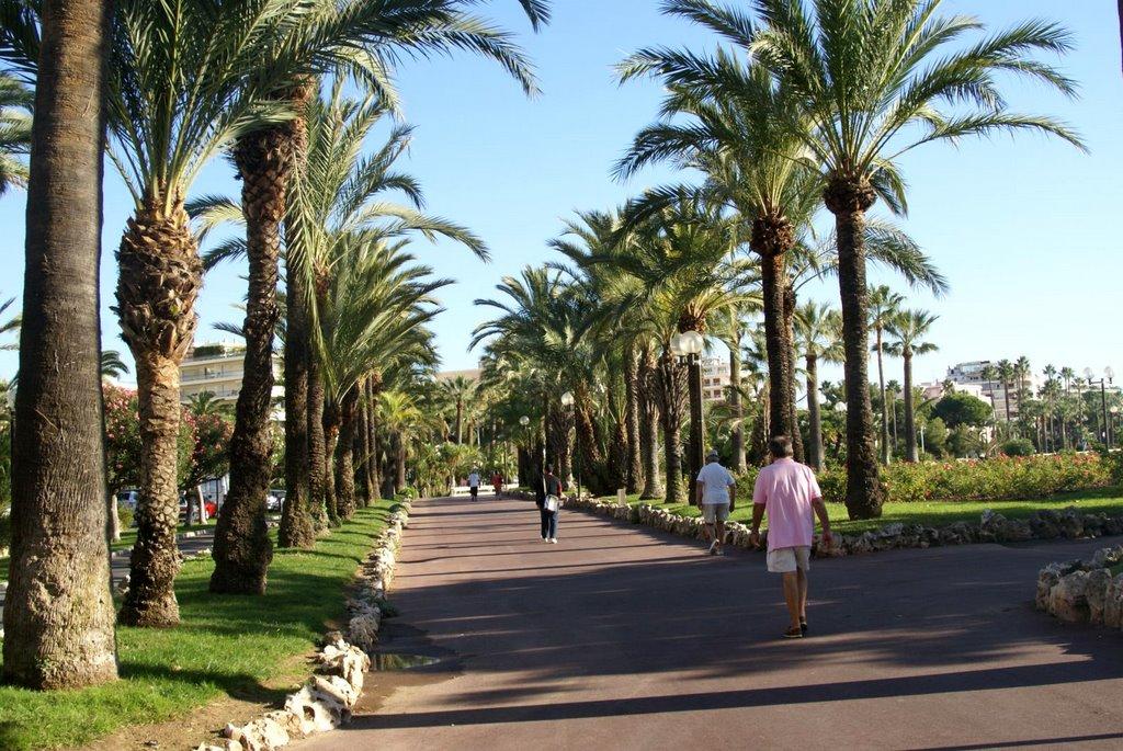 Promenade de la Croisette, Cannes (França)