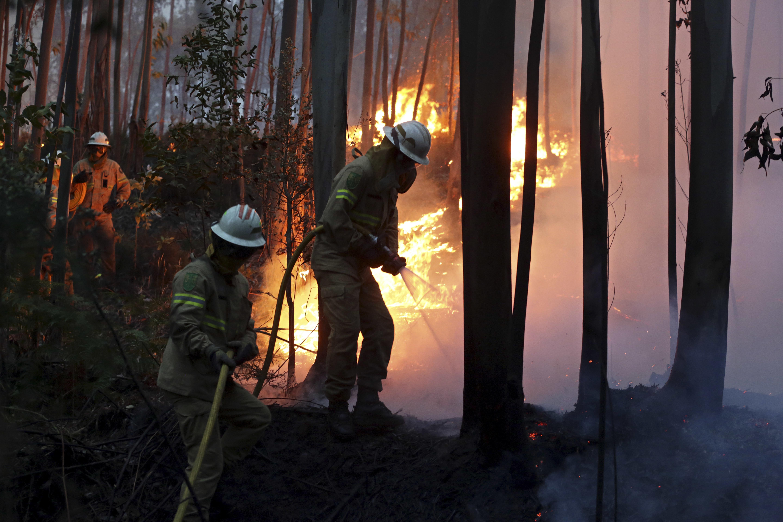 Incêndio de Pedrógão Grande já fez mais de 60 mortos. / Gtres