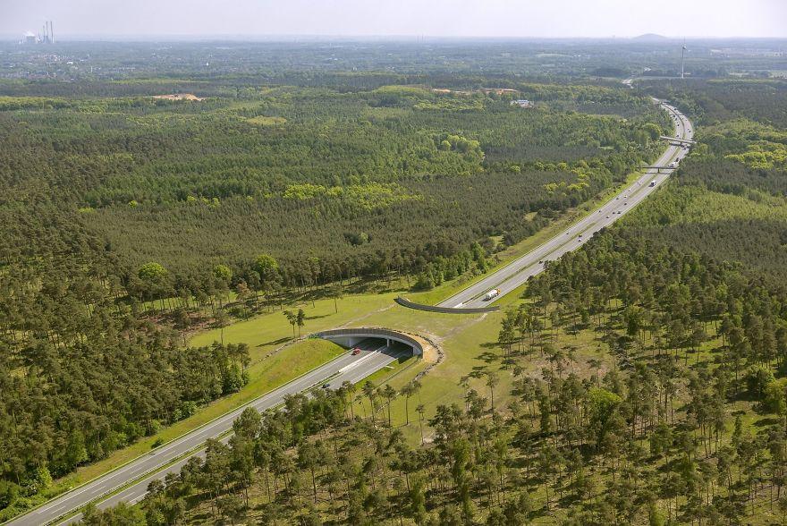 """6 – Passagem natural """"por cima"""" de uma autoestrada na Alemanha"""