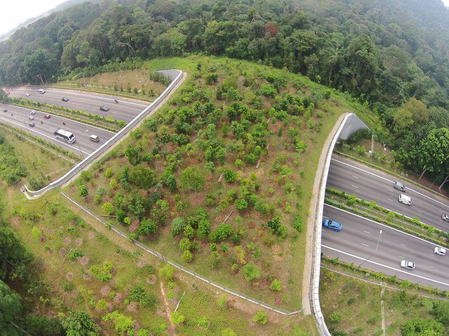 9 – Passagem natural em Singapura