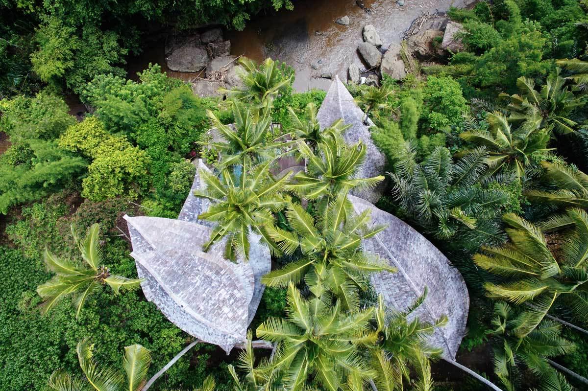 Os tetos têm forma de folha...