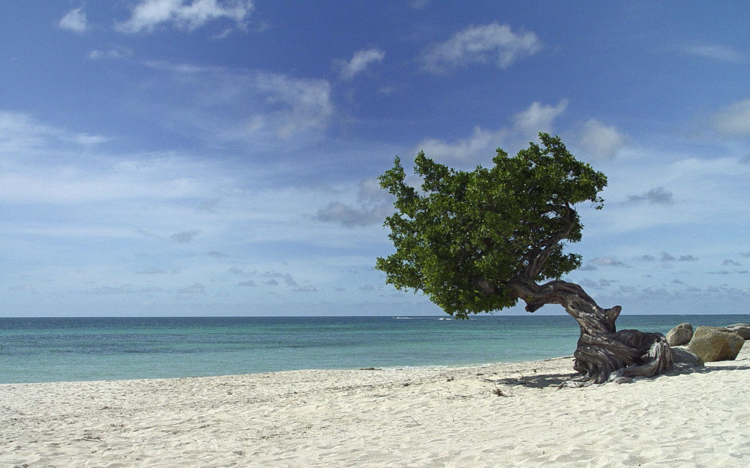 4- Eagle Beach, Aruba