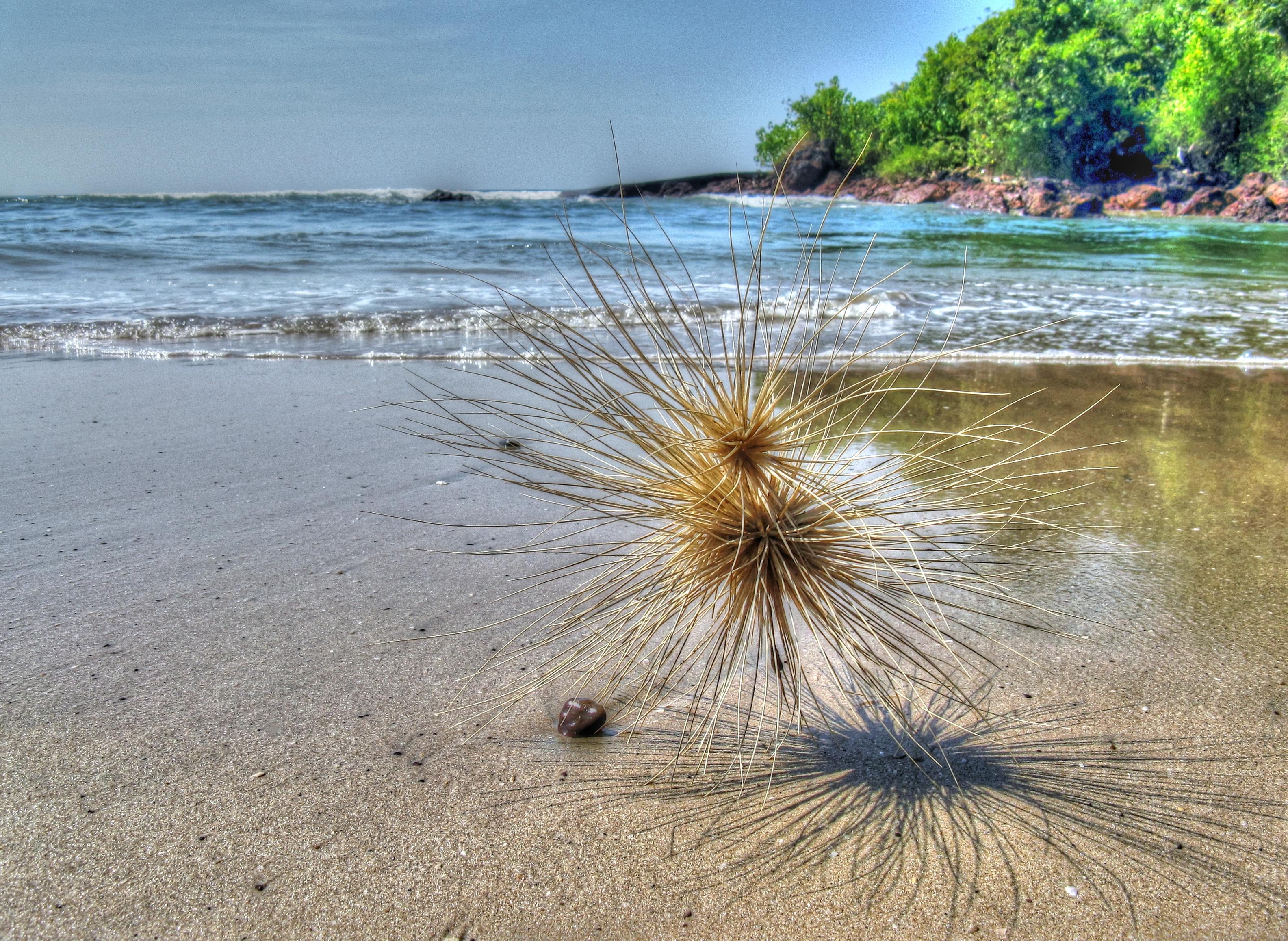 18- Praia Agonda, Índia