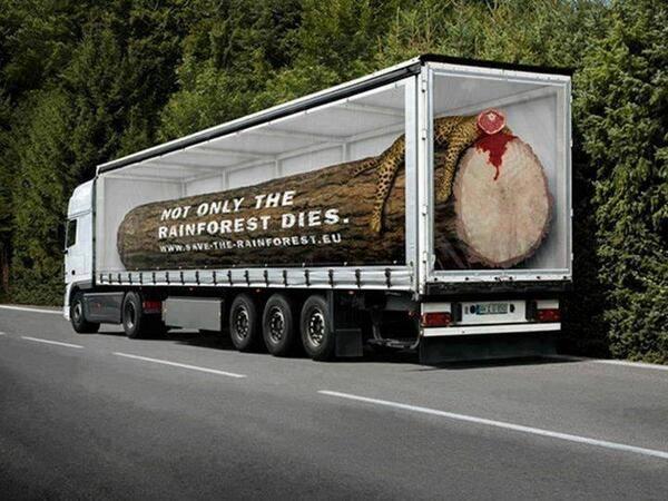 Camião