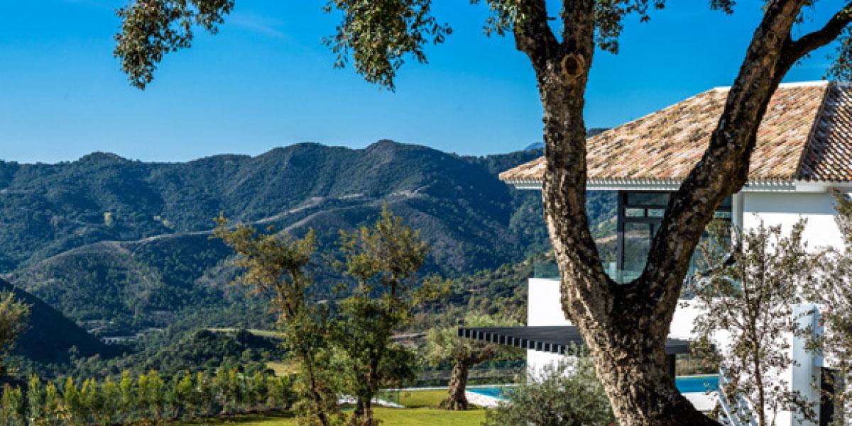 A casa está rodeada de espaços verdes...
