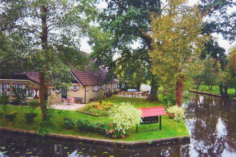 Casas adornadas com flores e grandes jardins