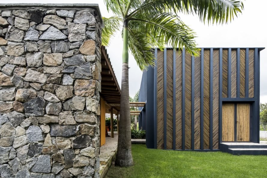 Detalhes do bambu