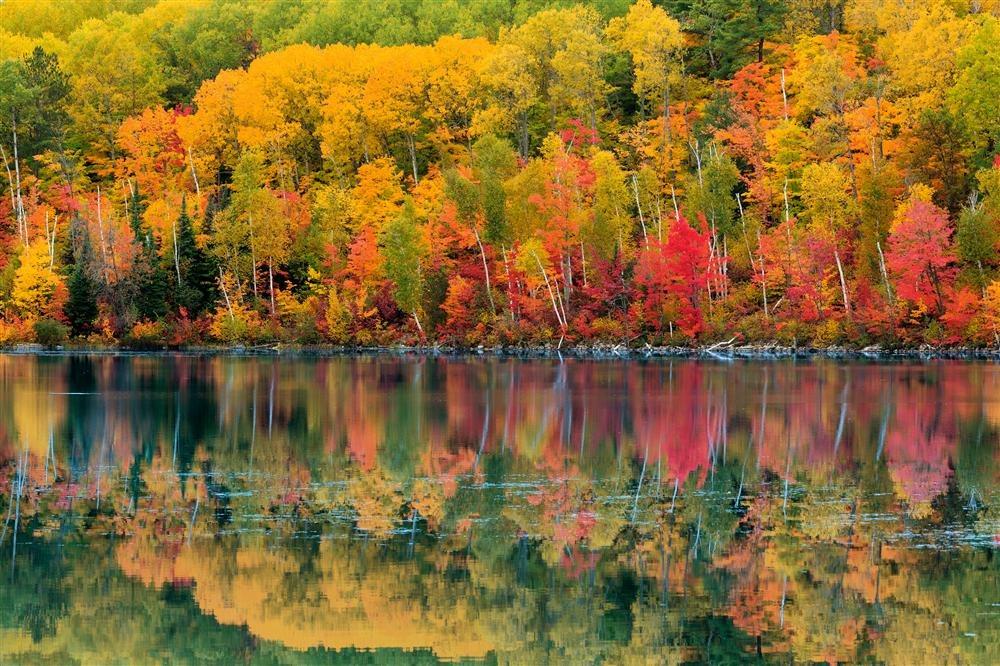 Explosão de outono em Ontário, Canadá / National Geographic