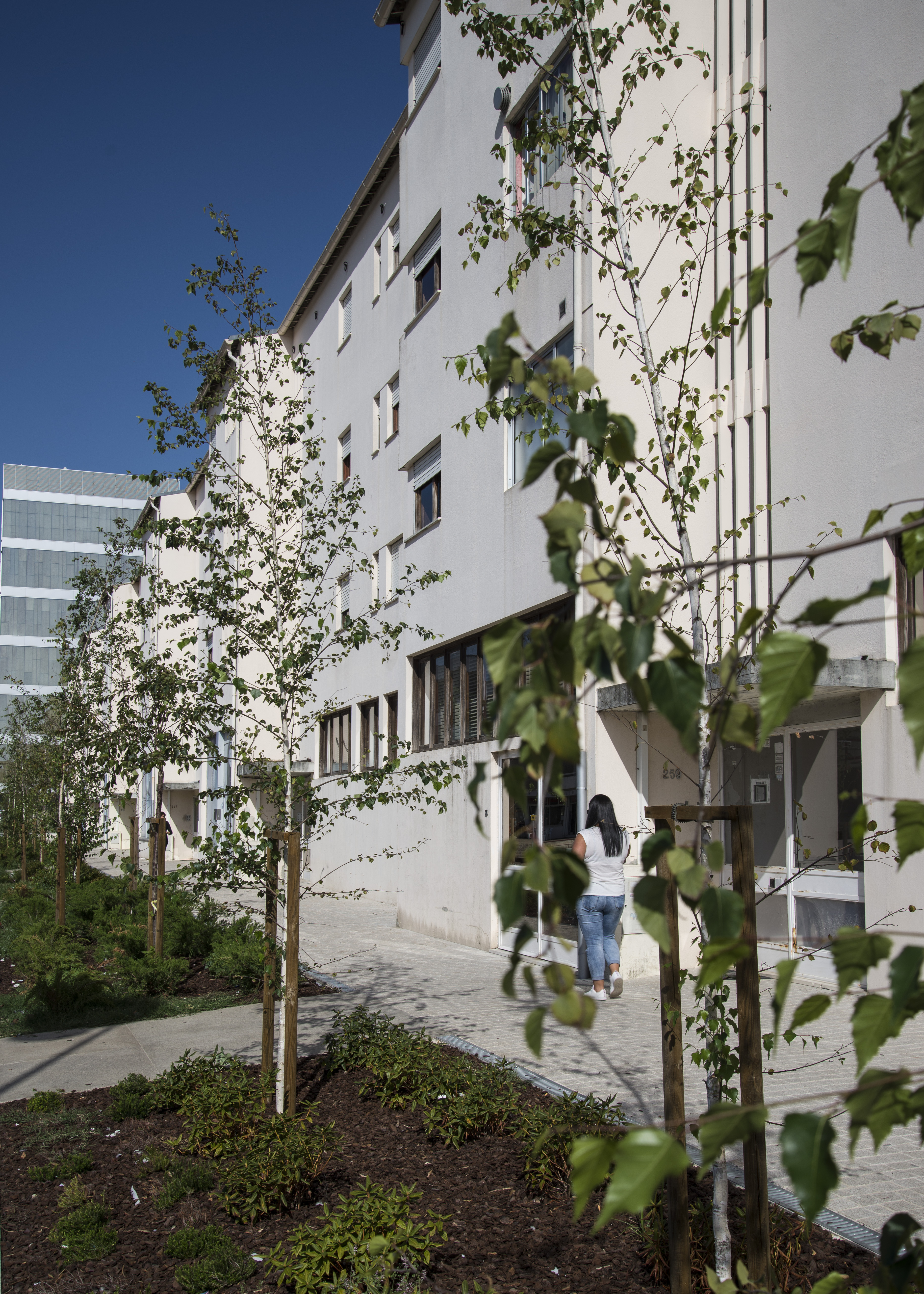 Edifício requalificado no Bairro do Sobreiro  / Câmara Municipal da Maia