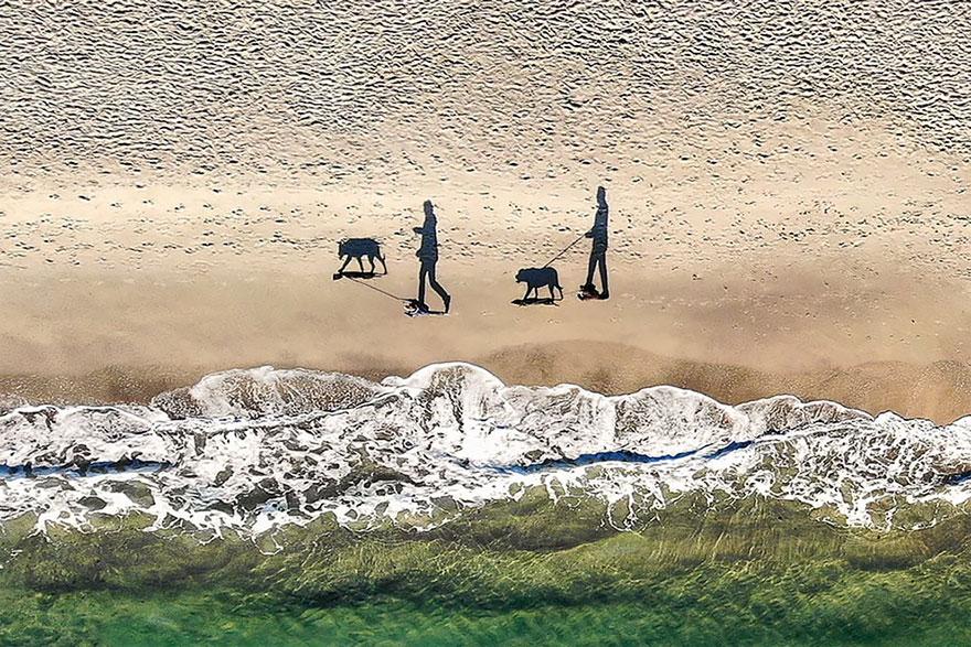 2 cães, 2 pessoas e 4 sombras