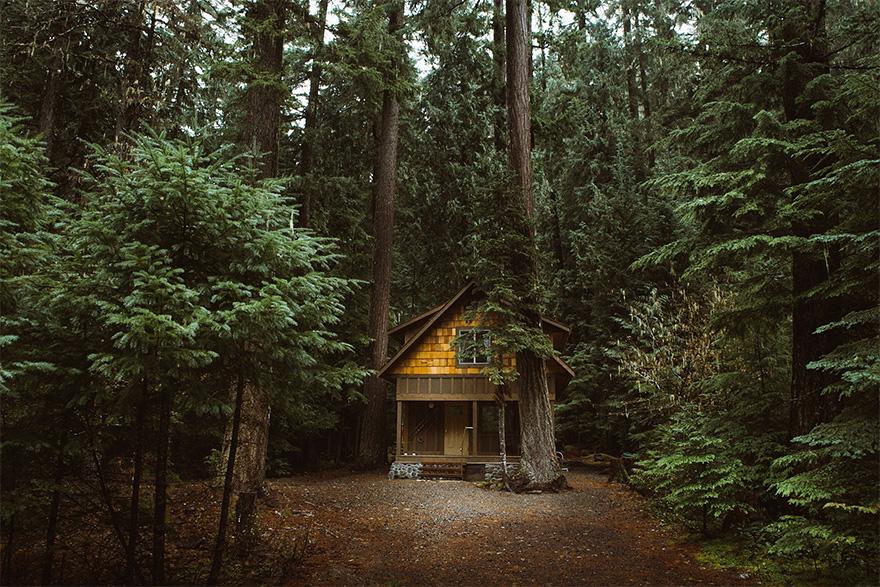 Mais uma casa absorvida pela natureza