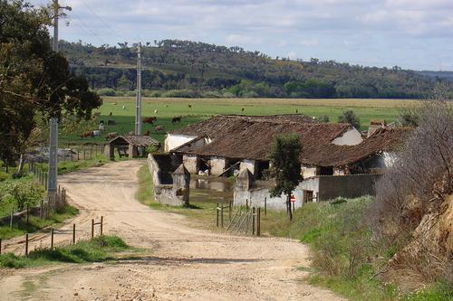 A Herdade do Polvorão está localizada no concelho de Gavião (Portalegre) / Observador