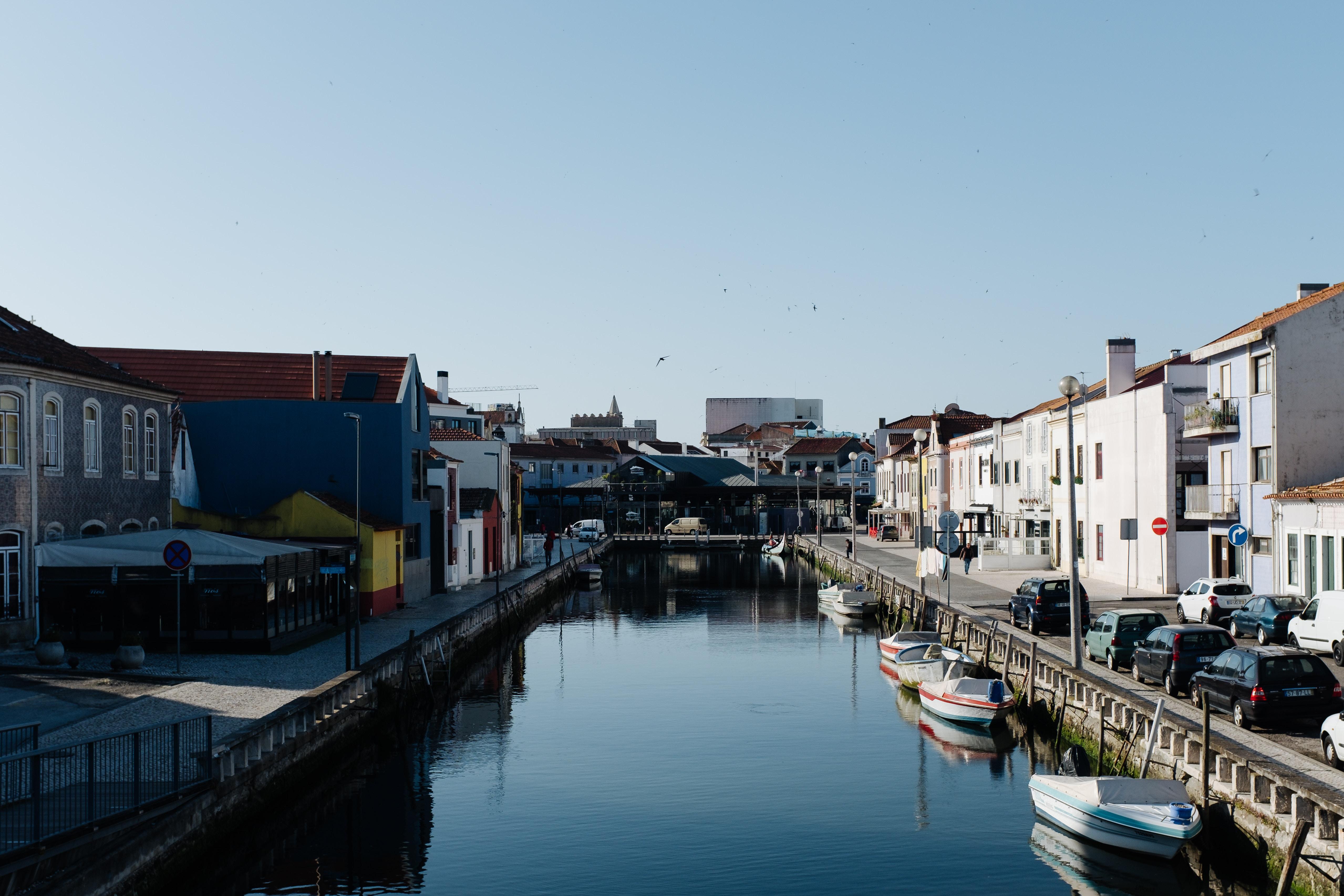 À boleia de um moliceiro, na Veneza portuguesa