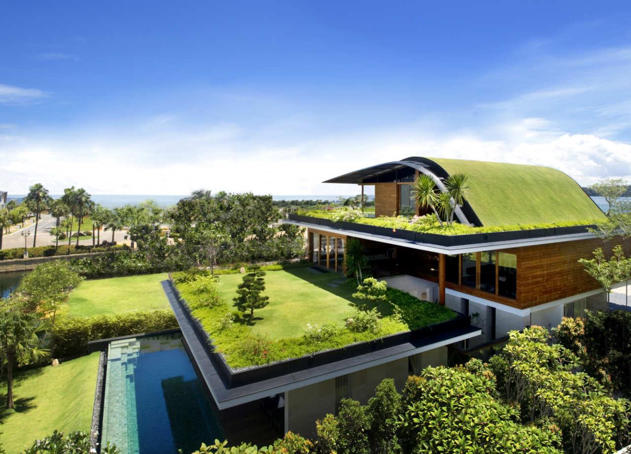 Um jardim no telhado