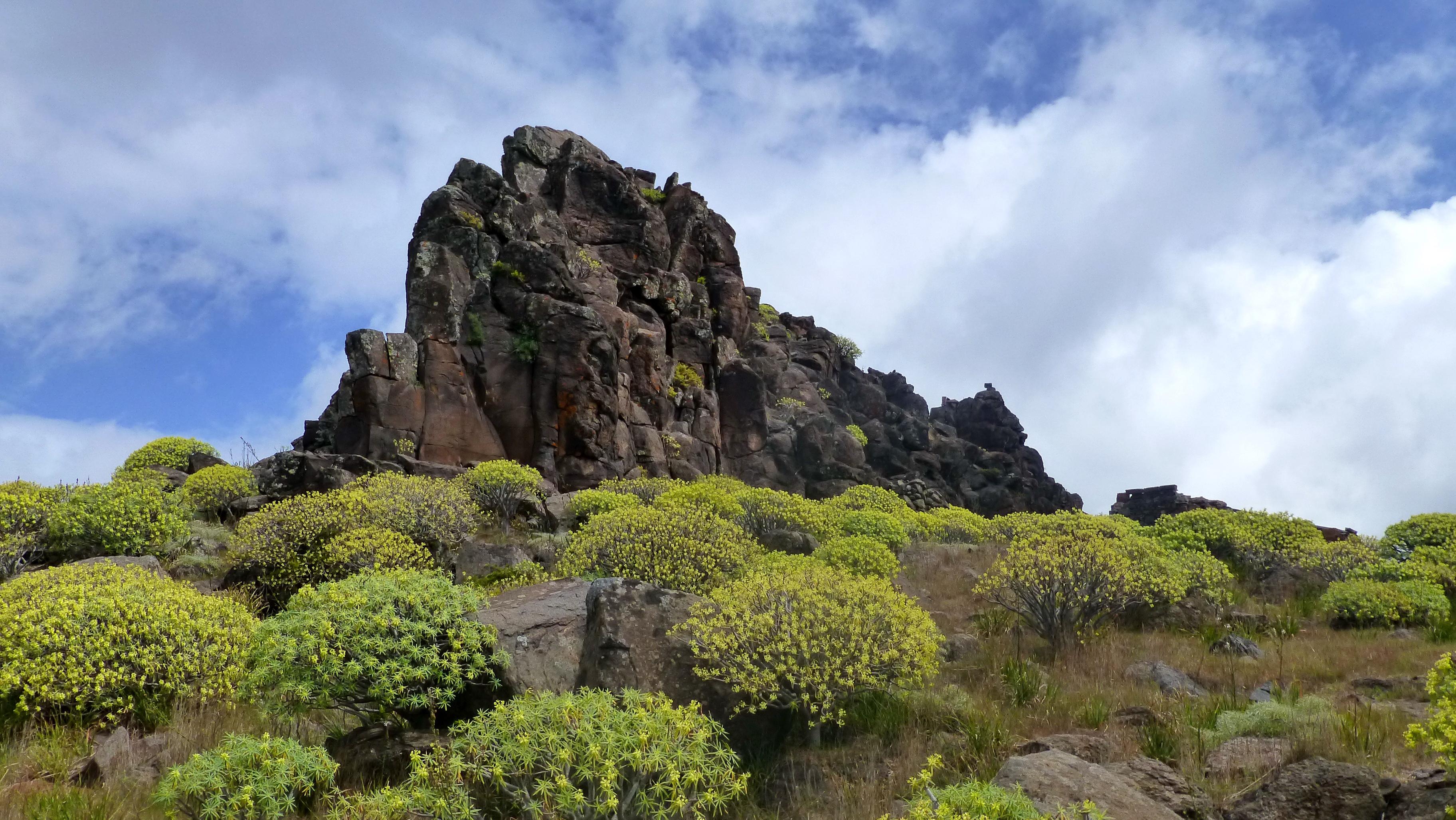 Ilha de La Gomera