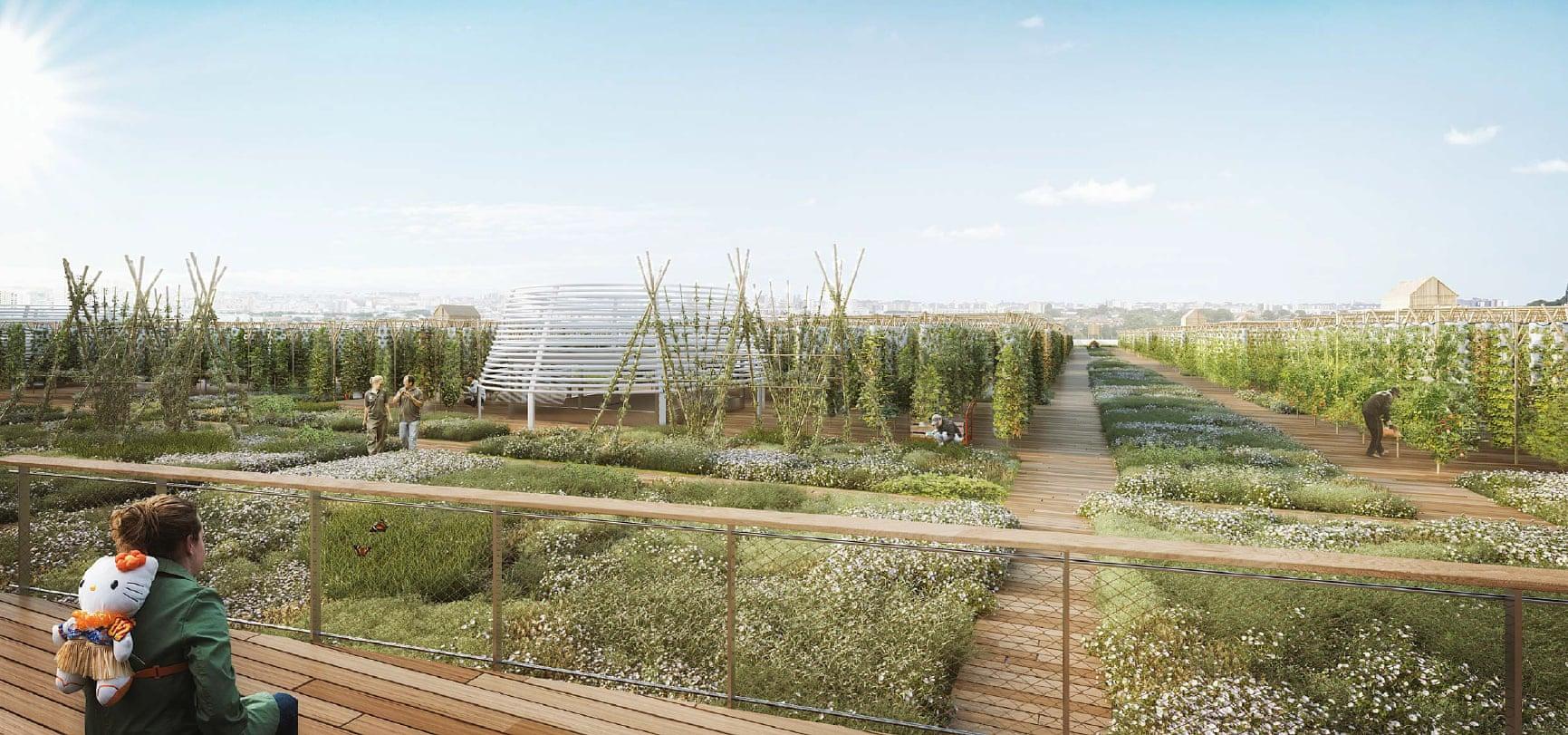 Haverá uma área comunitária de cultivo