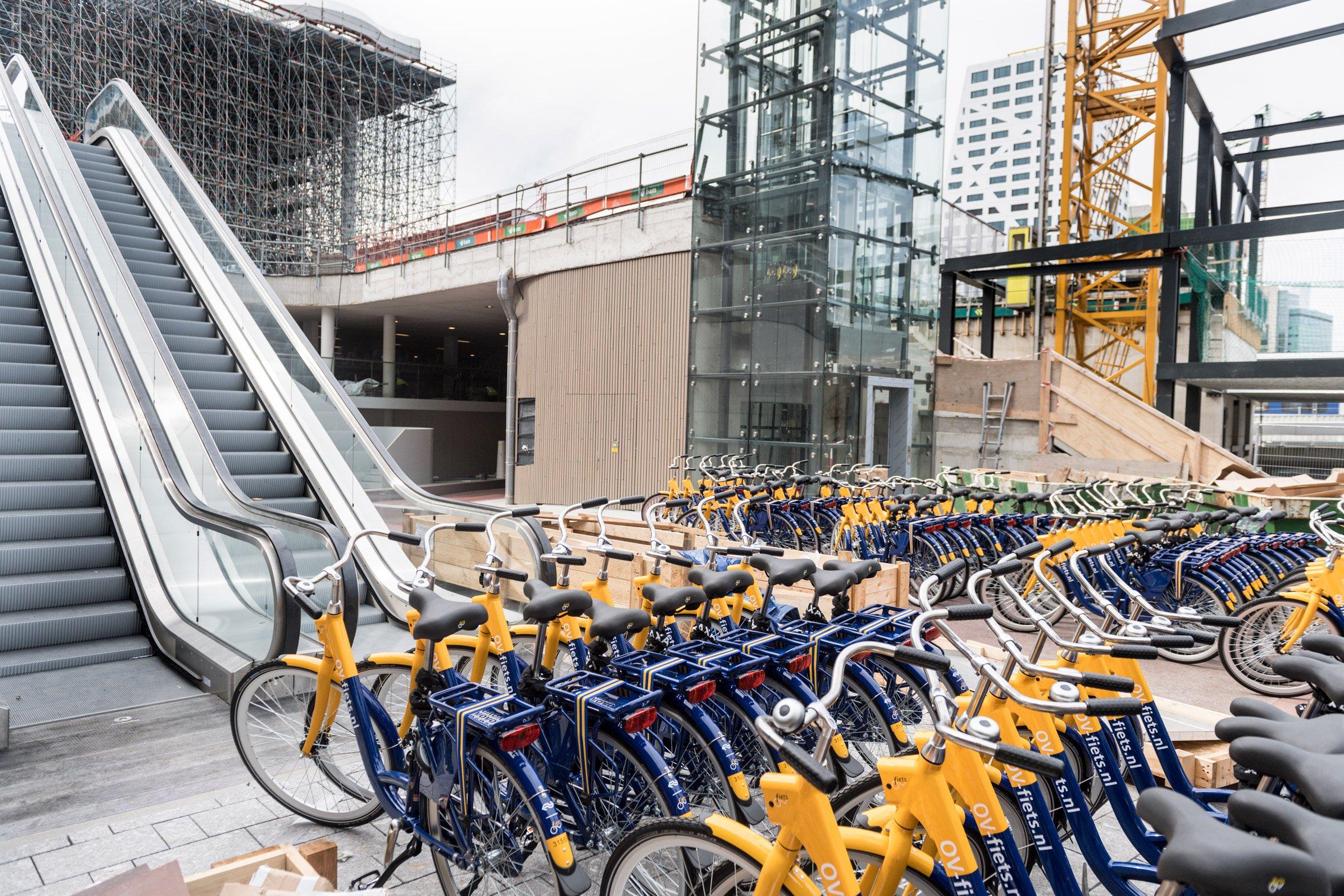Na Holanda a bicicleta é utilizada como transporte diário