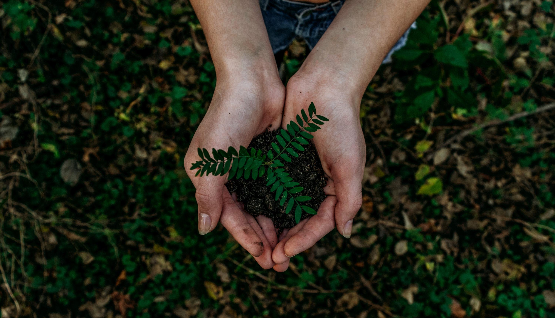 Reduzir a pegada ambiental