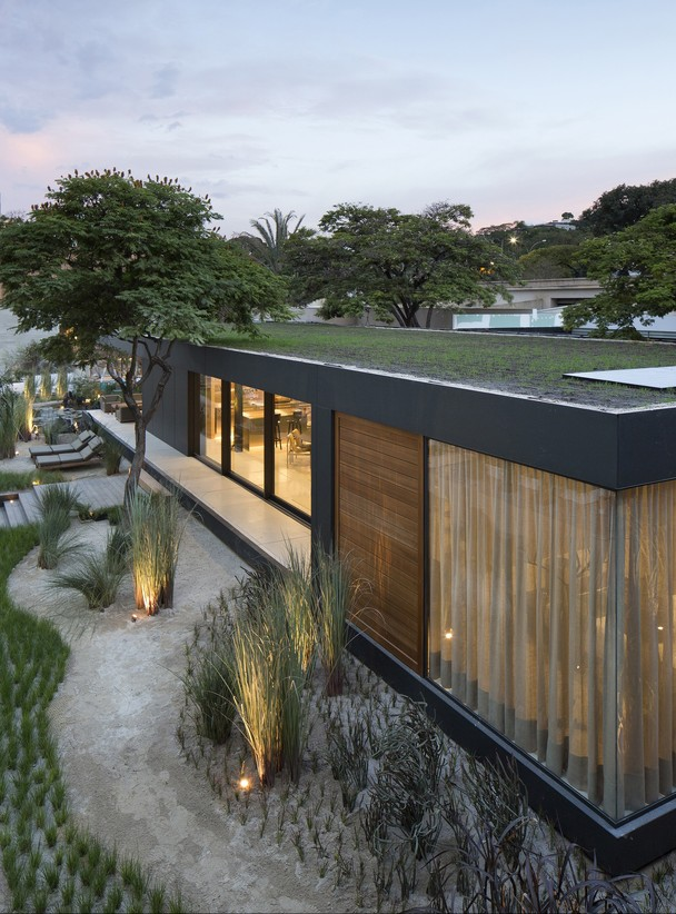 Com vegetação  no telhado
