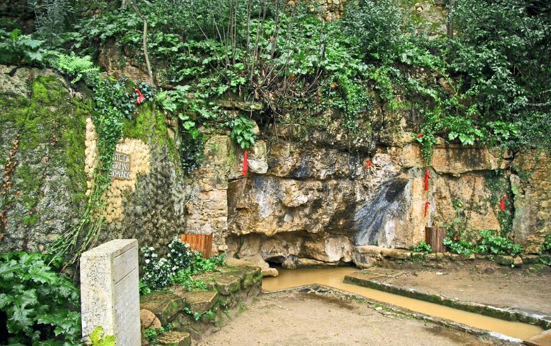 Quinta das Lágrimas, Coimbra