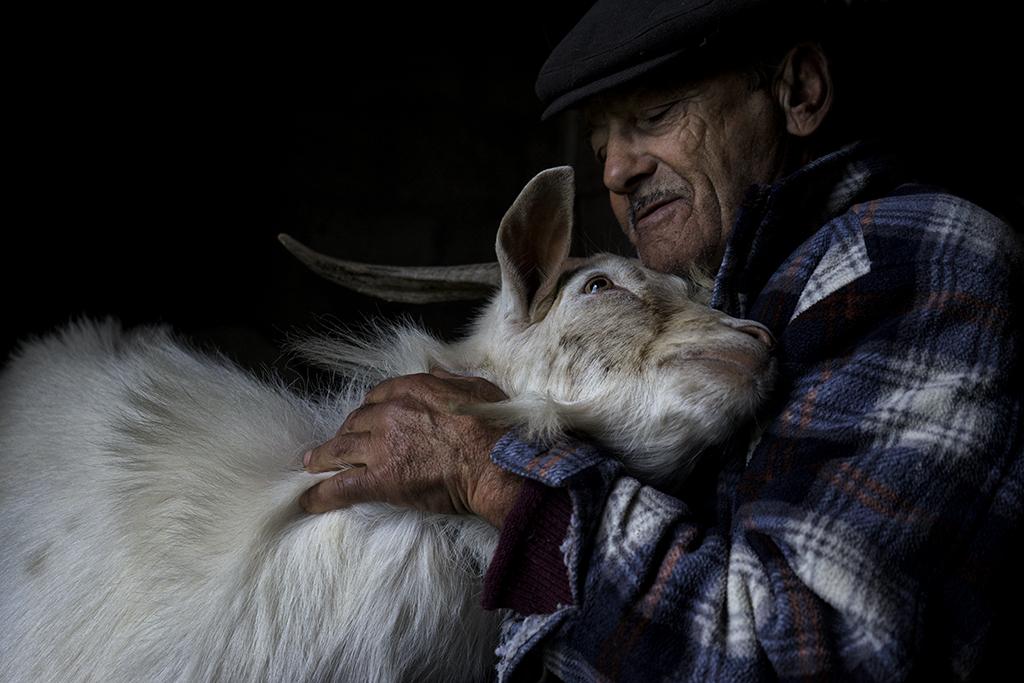 Abílio da Fonseca, agricultor da Murtosa / Jorge Bacelar