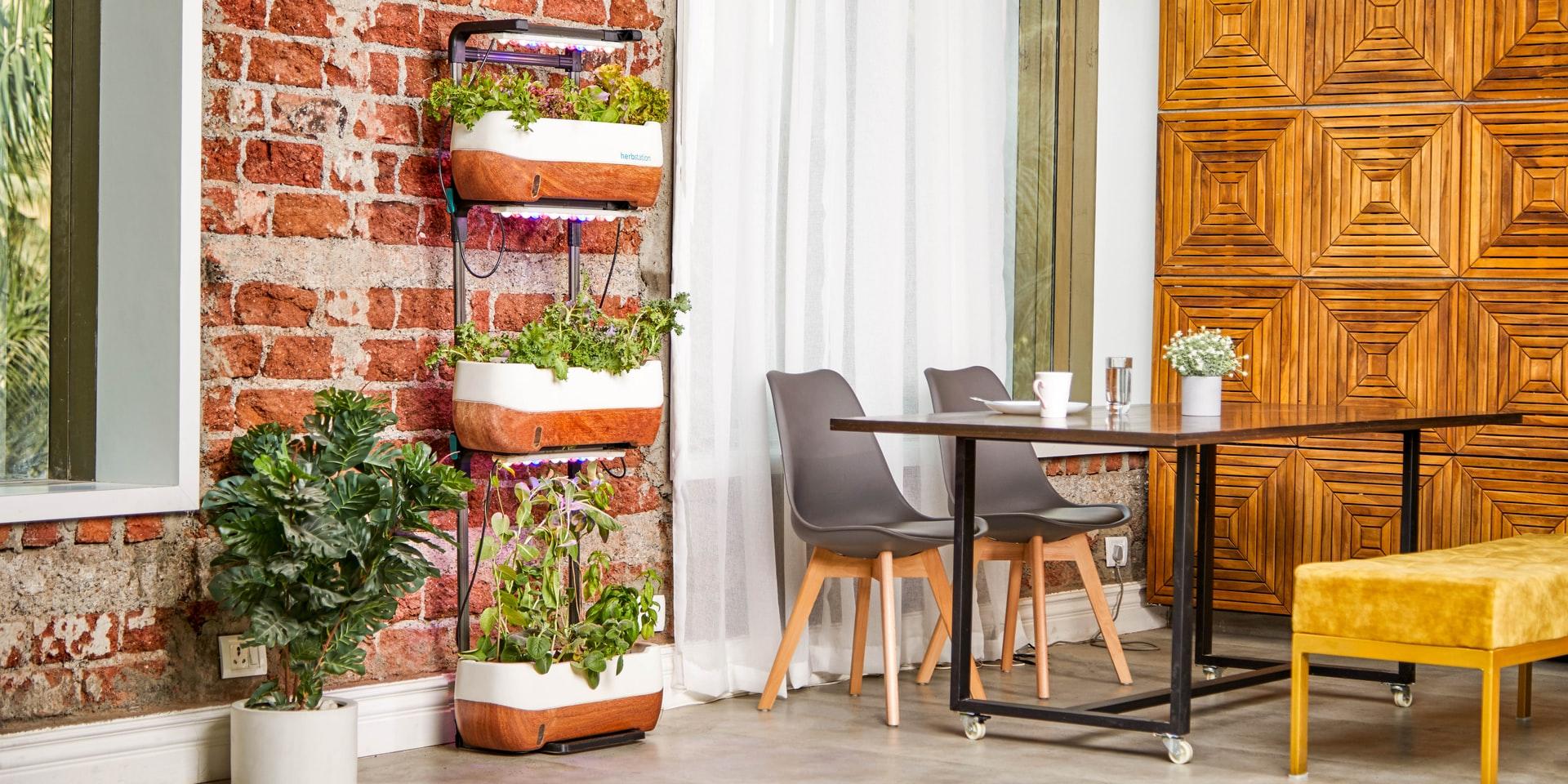 Como decorar o terraço sem gastar muito dinheiro