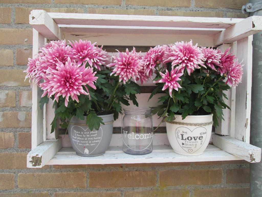 Decorar o terraço com flores