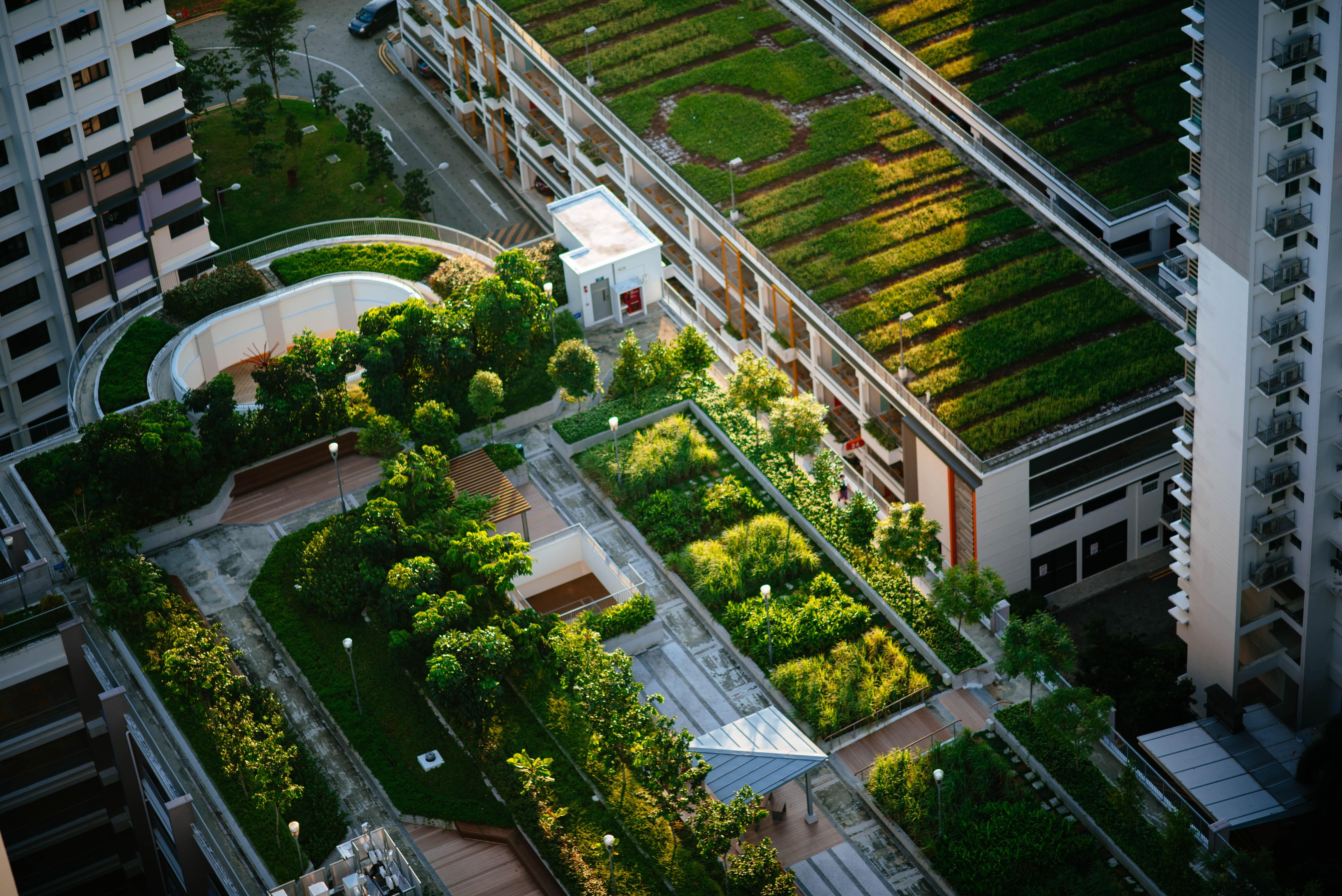 Mestrado em Cidades Sustentáveis e Inteligentes em Coimbra