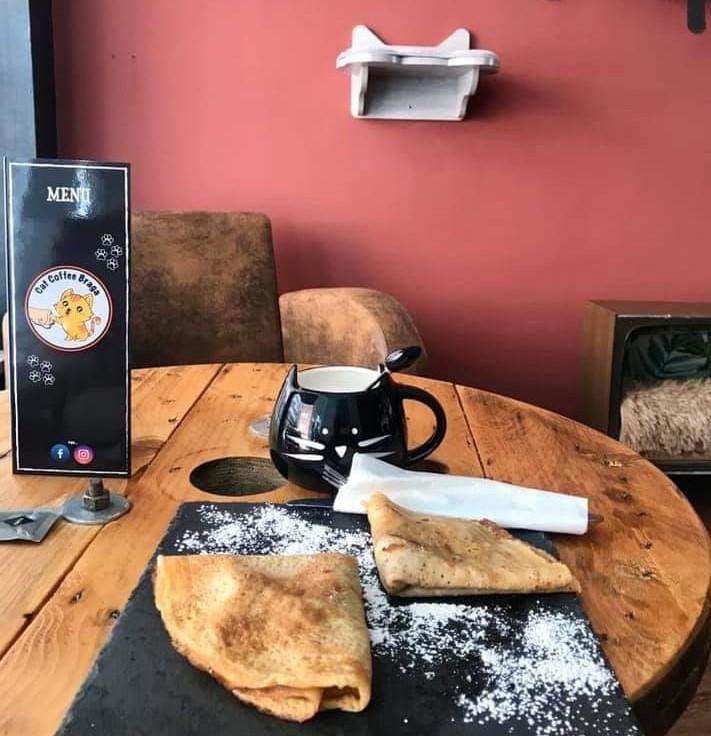 Cat Coffee Braga