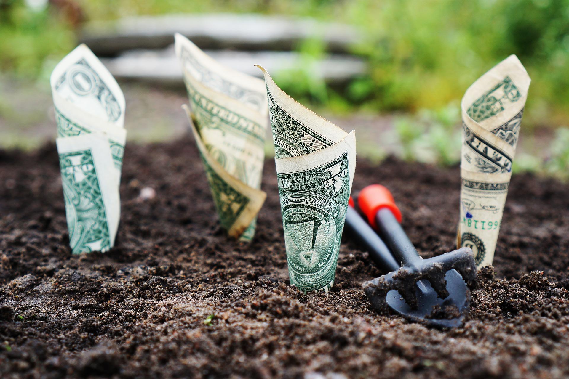Investir poupanças em certificados do tesouro
