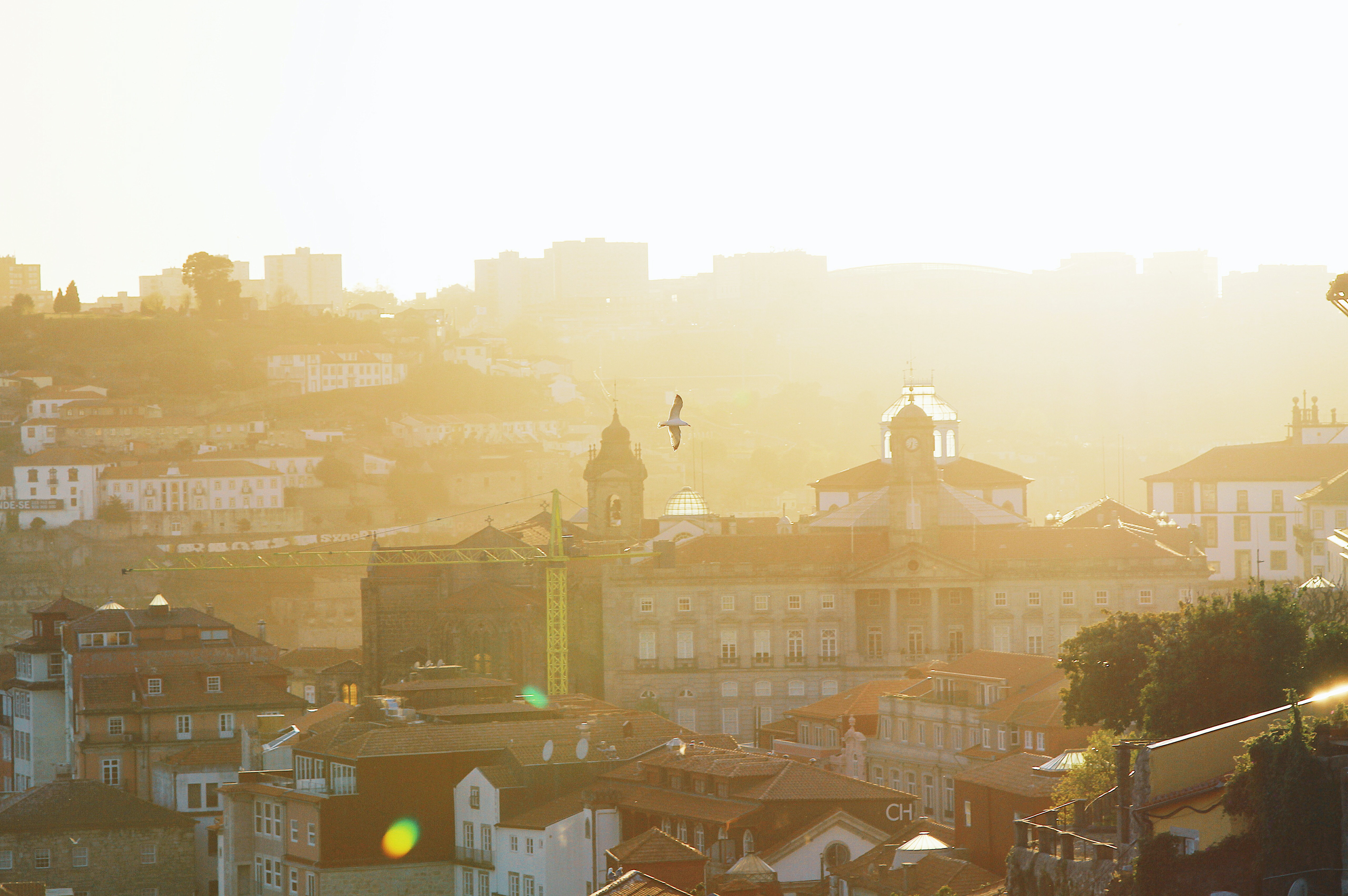 Casas a nascer no Grande Porto
