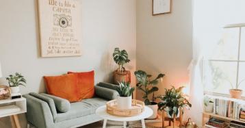 Como decorar a casa com plantas: um guia com dicas para todas as divisões