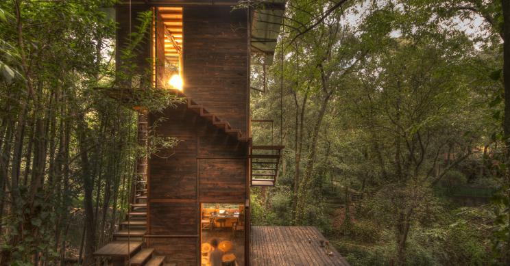 Uma (espetacular) casa-árvore mergulhada na floresta mexicana