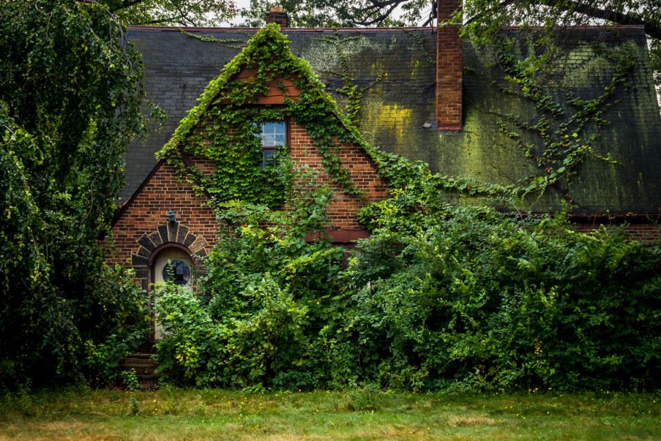Uma casa, literalmente engolida pela natureza