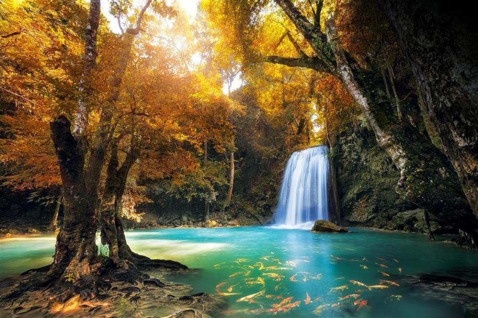 Selva de Kanchanburi, Tailândia / National Geographic