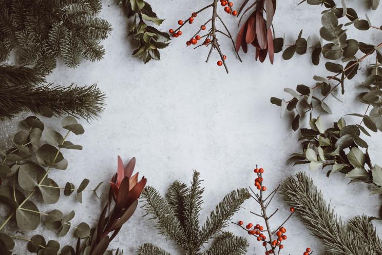 Ideias para o Natal 2019 / Photo by Annie Spratt on Unsplash