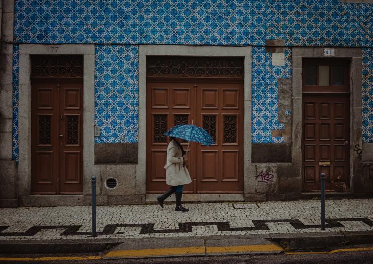 Photo by Sava Bobov on Unsplash